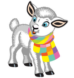 little lamb wearing a scarf vector image