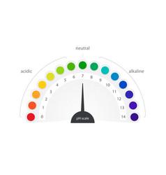 Ph scale indicator chart diagram acidic vector