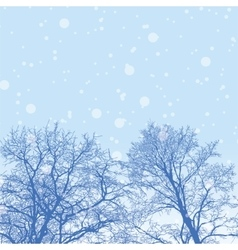 Snowy winter forest with trees vector
