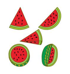 watermelon fruit template flat vector image