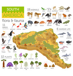 Isometric 3d south america flora and fauna map vector