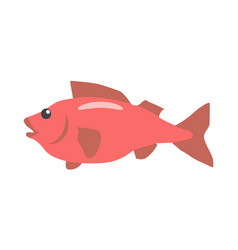 red fish cartoon flat vector image vector image