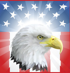 patriotic american eagle and flag vector image
