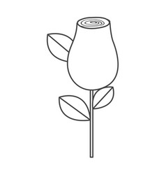 silhouette sketch rosebud with leaves and stem vector image vector image