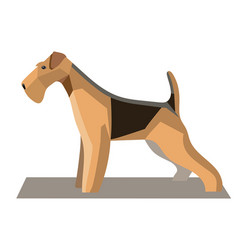 terrier minimalist image1 vector image