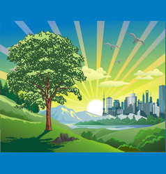 beautiful landscape-sunrise over the city vector image