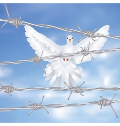 Dove and Barbed Wire vector