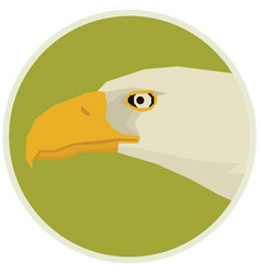 Eagle of bird in round frame vector