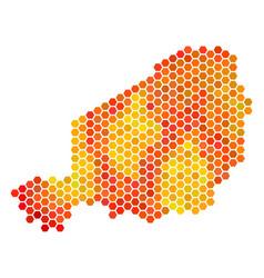 Fired hexagon niger map vector