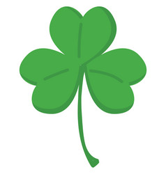 green clover with three leafs on white background vector image