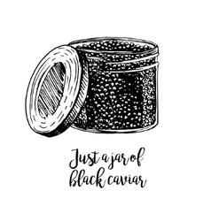 hand drawn jar with black caviar vector image
