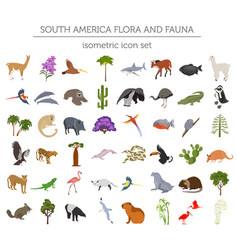 Isometric 3d south america flora and fauna vector