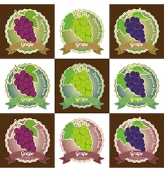 Set of various grape fruit label tag badge sticker vector