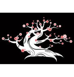 blossom tree vector image