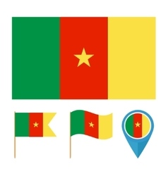 Camerooncountry flag vector image vector image