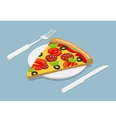 Piece of Pizza isometrics 3D Italian food on plate vector image