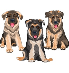 Smiling puppies dog German shepherd vector image vector image