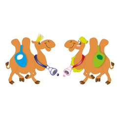 couple of the camel vector image