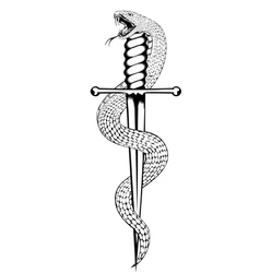 snake and dagger vector image vector image