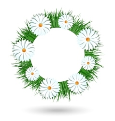 Camomile wreath isolated on white background vector