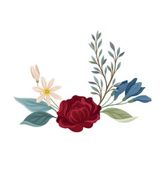 Dark red rose with white flowers vector