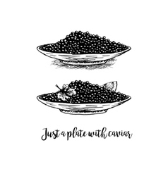 hand drawn set plates with black caviar vector image