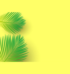 Palm tree leaves on a bright yellow background vector