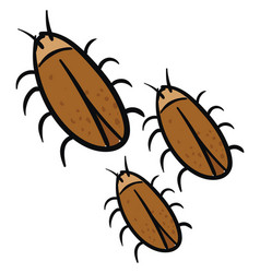 Three brown cockroaches on white background vector
