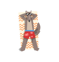 Wolf in sunglasses sunbathing on the beach cute vector