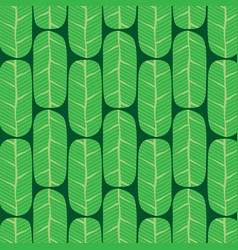 green banana leaves pattern vector image