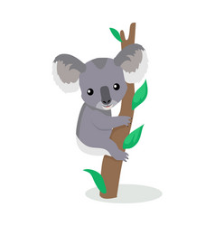 koala cartoon flat vector image