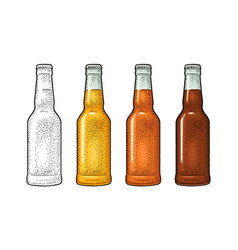 close bottle with three types beer vintage color vector image