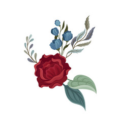Dark red rose with leaves on vector