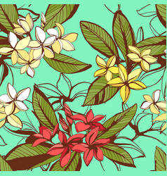 tropical floral summer seamless pattern vector image