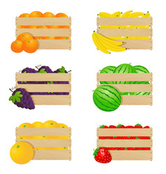 wooden boxes with fresh fruits vector image