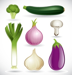 mixed vegetables - set 2 of 2 vector image vector image