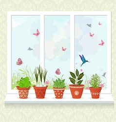 different herbs planted in ceramic pots on a vector image vector image