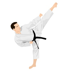 Karateka vector image vector image