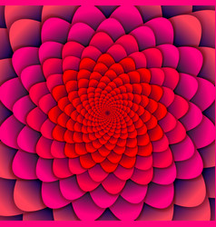 Abstract background pink spiral flower pattern vector