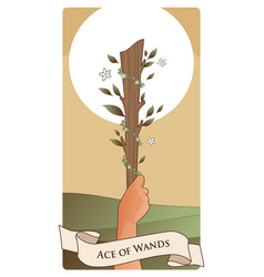 Aces tarot cards wands hand holding a rod vector