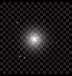 Bright beautiful stars light effect bright star vector