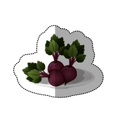 Colorful sticker of set collection beets vegetable vector