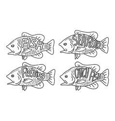 hand drawing fish vector image