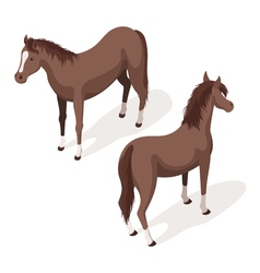 Isometric 3d of brown sorrel horses vector image