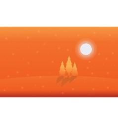 Landscape of spruce on orange backgrounds vector image