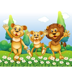 Lion family standing in the flower field vector image