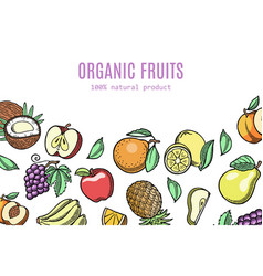 organic eco fruits exotic vector image