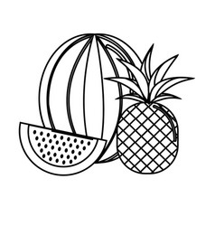 Silhouette watermelon and pineapple fruit icon vector