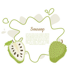 soursop whole and cut fruit in abstract frame text vector image