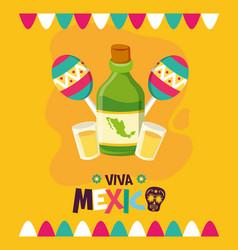 Tequila bottle and maracas celebration viva mexico vector